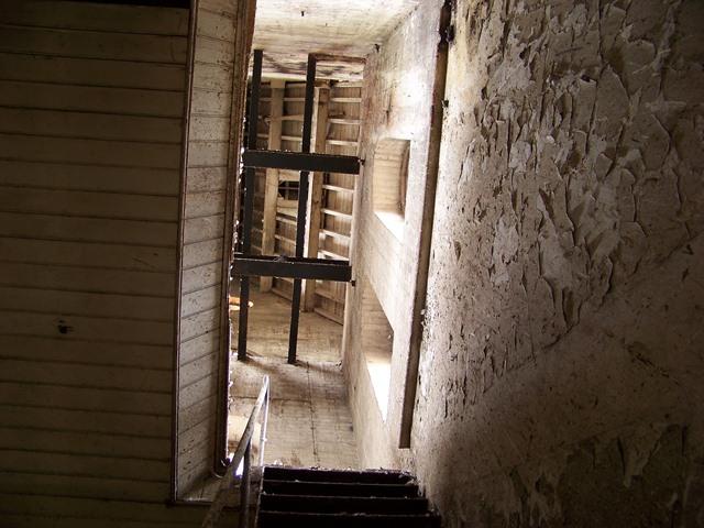 David Lloyd Epsom >> Horton Chapel & Epsom Cluster Remnants, Oct '12 (V. pic heavy)